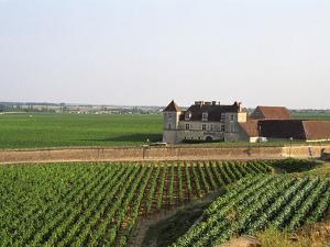 Clos De Vougeot, 16th Century Monastery and Vineyard, Les Petits Vougeots Vineyard by Per Karlsson