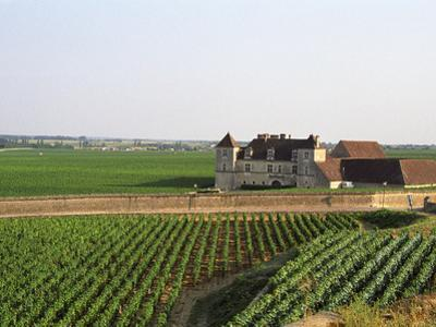Clos De Vougeot, 16th Century Monastery and Vineyard, Les Petits Vougeots Vineyard by Per Karlsson