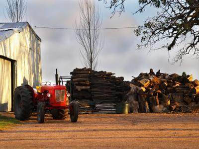 Farm with Old Red Tractor and Firewood, Montevideo, Uruguay by Per Karlsson