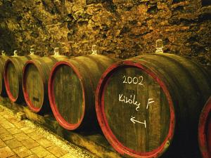 Kiralyudvar Winery Barrels with Tokaj Wine, Tokaj, Hungary by Per Karlsson