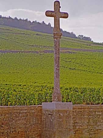Stone Cross Marking the Grand Cru Vineyards, Romanee Conti and Richebourg, Vosne, Bourgogne, France by Per Karlsson