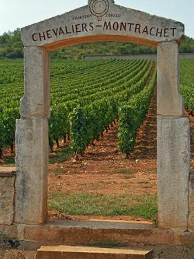 Stone Portico to the Vineyard Chevalier-Montrachet, Chartron Dupard, France by Per Karlsson