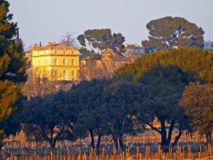 Vineyard and Building of Chateau La Nerthe, Chateauneuf-Du-Pape, Vaucluse, Rhone, Provence, France by Per Karlsson