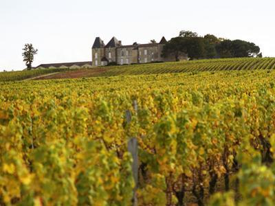 Vineyard and Medieval Chateau, Choteau d'Yquem, Sauternes, Bordeaux, Gironde, France by Per Karlsson