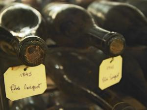 Wine Cellar and Bottles of Clos De Vougeot, France by Per Karlsson