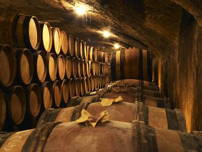 Wooden Barrels with Aging Wine in Cellar, Domaine E Guigal, Ampuis, Cote Rotie, Rhone, France