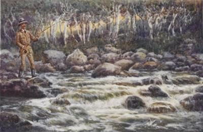 Fishing for Trout in the Snowy River Australia by Percy F.s. Spence