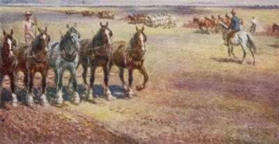 Ploughing in Australia by Percy F.s. Spence