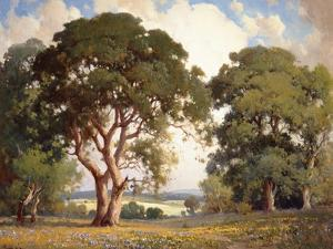 Oaks and Wildflowers by Percy Gray