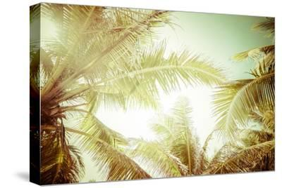 Abstract Summer Background with Tropical Palm Tree Leaves by Perfect Lazybones