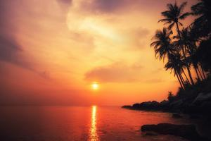 Amazing Colors of Tropical Sunset. Phuket Island, Thailand Travel Landscapes and Destinations by Perfect Lazybones