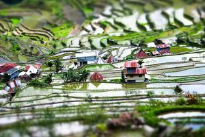 Amazing Tilt Shift Effect View of Rice Terraces Fields and Village Houses in Ifugao Province Mounta by Perfect Lazybones