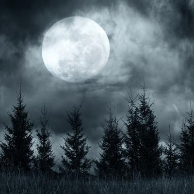 Magic Landscape with Pine Tree Forest under Dramatic Cloudy Sky at Full Moon Mysterious Night by Perfect Lazybones
