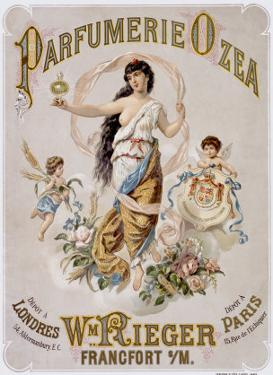 Perfume Ozea
