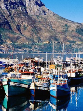 Fishing Boats in Hout Bay Marina, Cape Town, South Africa