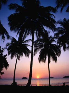 Palm Tree-Lined Hat Kaibae at Sunset, Thailand by Pershouse Craig