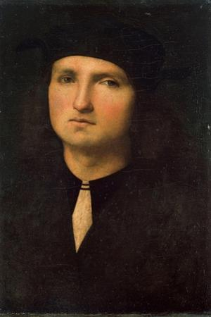 Portrait of a Young Man, Between 1495 and 1500