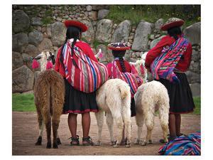 Peruvian Girls & Alpacas Peru