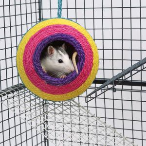 Pet Rat in Toy in Cage