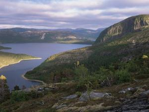 Late Evening Light Over Norwegian Fjord, Lausvnes, Nord-Trondelag, Norway, Europe by Pete Cairns