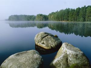 Loch Garten Rspb Reserve at Dawn, Highlands, Scotland, UK by Pete Cairns