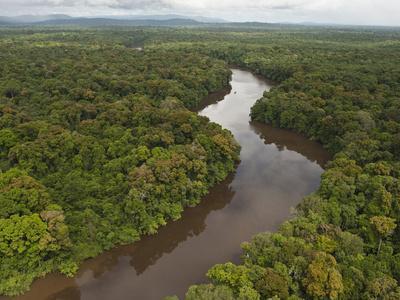 Essequibo River, Between the Orinoco and Amazon, Iwokrama Reserve, Guyana