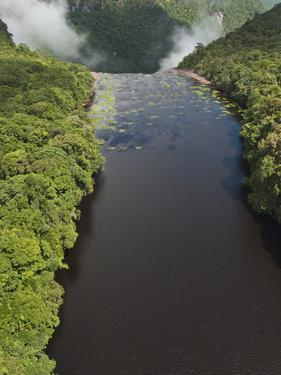 Potaro River Which Runs into the Essequibo River, Kaieteur National Park Rainforest, Guyana by Pete Oxford