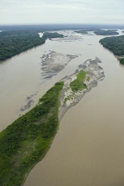Sandbank in Napo River, Amazon Rainforest, Ecuador by Pete Oxford