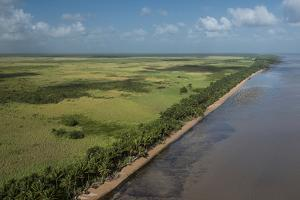 Shell Beach, North Guyana by Pete Oxford
