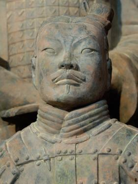 Terra Cotta Warriors and Horses Dig, Xi'an, Shaanxi Province, China by Pete Oxford