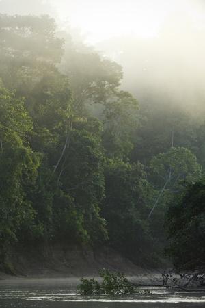 Tiputini River Scenic, Yasuni NP, Amazon Rainforest Ecuador