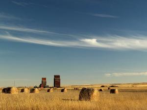 Derelict Grain Elevators Stand in the Prairies by Pete Ryan