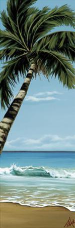 Palm Break