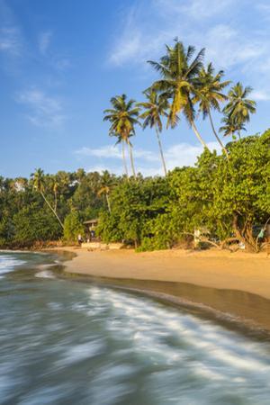Beach, Mirissa, South Coast, Sri Lanka by Peter Adams