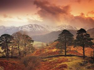 Borrowdale, Lake District, Cumbria, England by Peter Adams