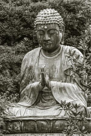 Buddha at Gokokusan Tenno ji Temple, Taito, Tokyo, Japan by Peter Adams