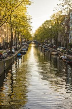 Canal, central Amsterdam, Netherlands by Peter Adams