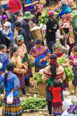 Flower Hmong Tribes People at Market, Nr Bac Ha, Nr Sapa, Vietnam by Peter Adams