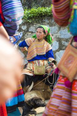 Flower Hmong Woman Selling Dogs at Market, Bac Ha, Vietnam by Peter Adams
