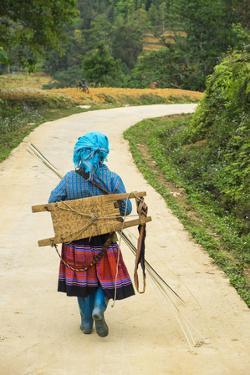 Flower Hmong Woman Walking Along Road, Nr Bac Ha, Nr Sapa, N. Vietnam by Peter Adams