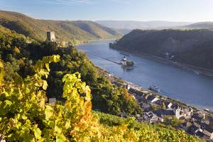 Germany, Rheinland-Pfalz, Pfalzgrafenstein and Gutenfels Castles by Peter Adams
