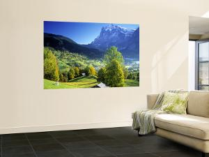Grindelwald, Berner Oberland, Switzerland by Peter Adams