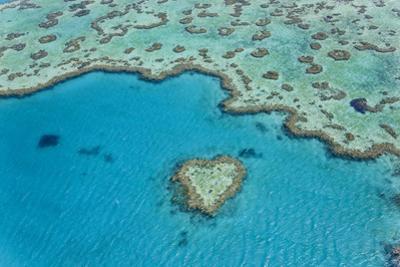 Heart Reef, Part of Great Barrier Reef, Australia by Peter Adams
