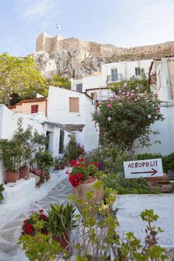 Houses Below Acropolis, Athens, Greece by Peter Adams