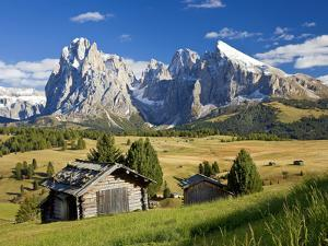 Italy, Trentino-Alto Adige, South Tyrol, Bolzano District, Alpe Di Siusi, Seiser Alm, Sassolungo (L by Peter Adams