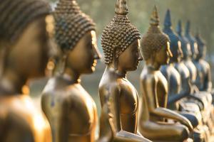 Line of Buddha statues, Seema Malaka temple on Beira Lake. Colombo, Sri Lanka by Peter Adams