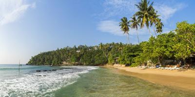 Mirrisa beach, Mirissa, South coast, Sri Lanka by Peter Adams