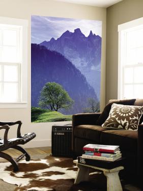 Mountain Landscape, Switzerland by Peter Adams