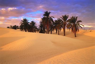 Sahara Desert in Tunisia by Peter Adams