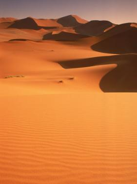 Sand Dunes, Namibia by Peter Adams